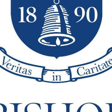 Bishop Wordsworth School Finance