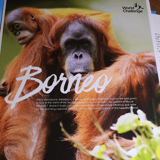 World Challenge Borneo 2019 - Lucy Harding