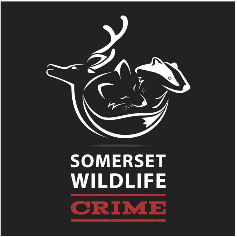 Somerset Wildlife Crime