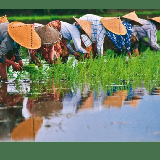 World Challenge Cambodia and Vietnam 2020 - Jasmine Clifford