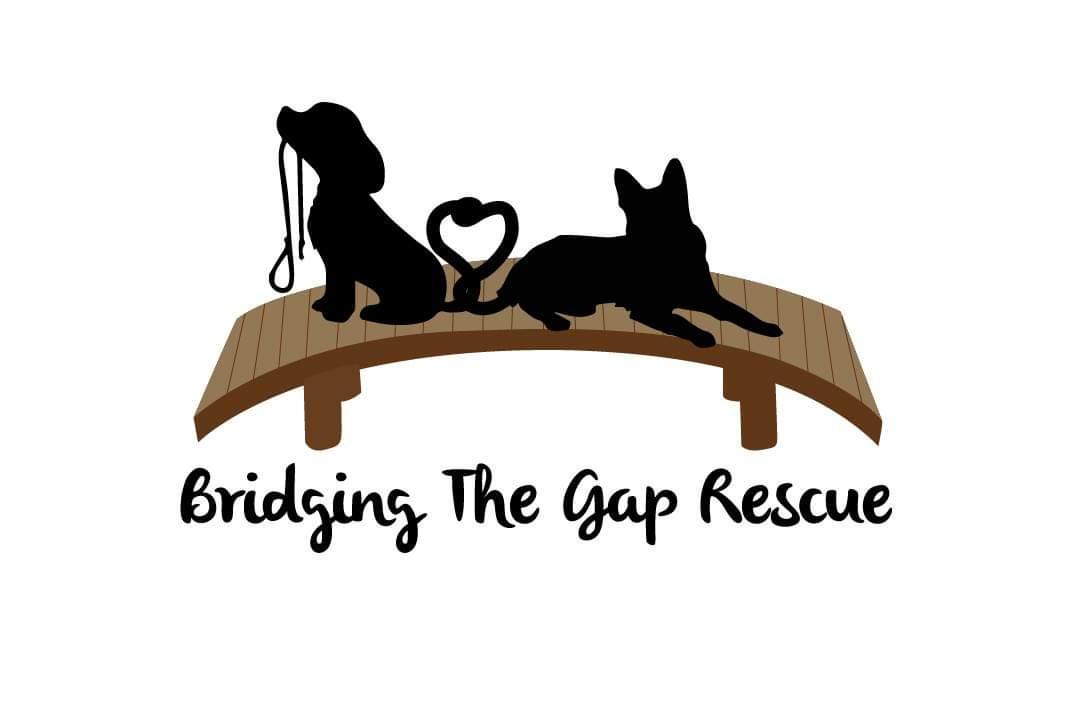 Bridging The Gap Rescue