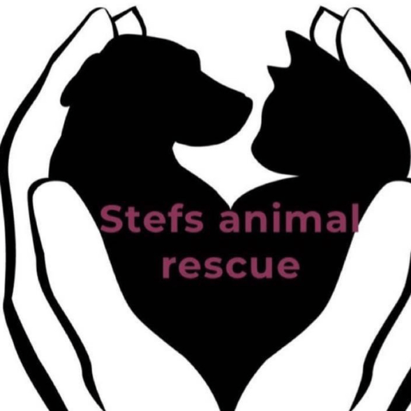 Stefs Animal Rescue and Rehome