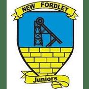 New Fordley Juniors F.C.