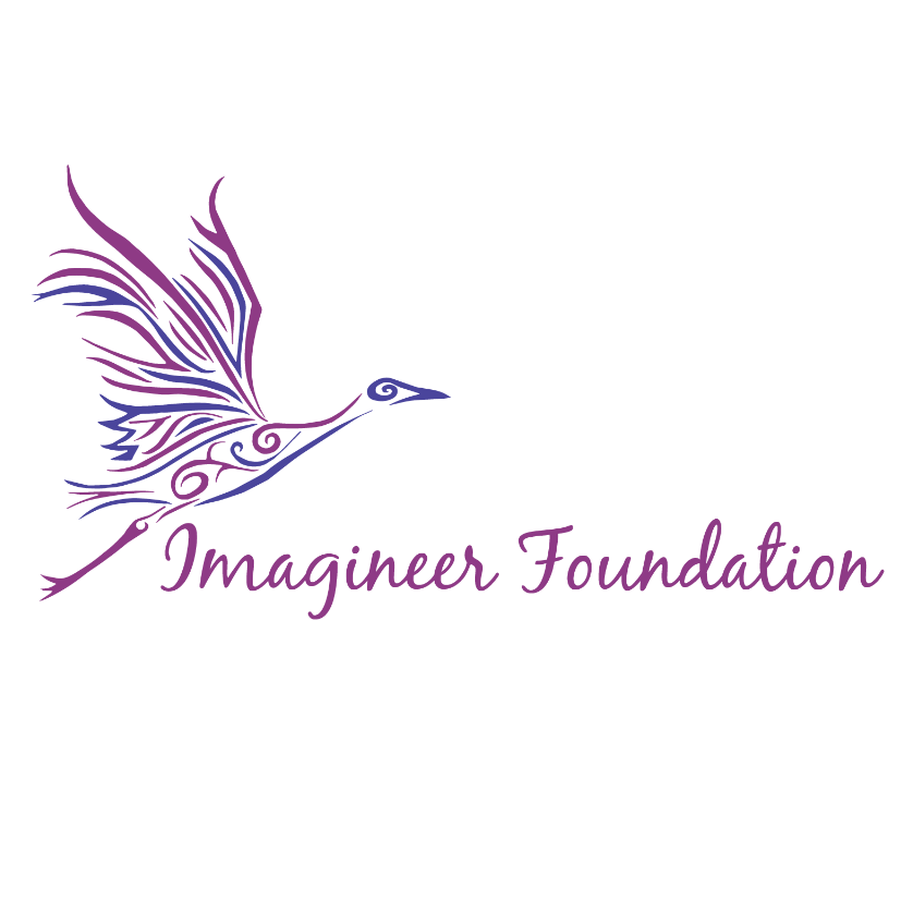 Imagineer Foundation