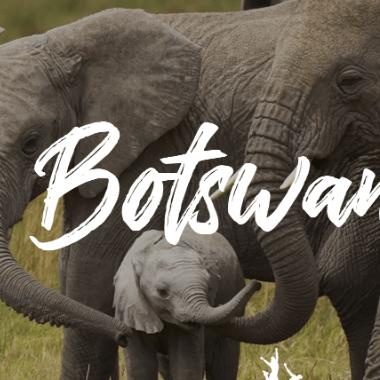 World Challenge Botswana 2019 - Glenn Premarion