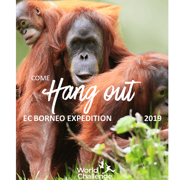 World Challenge Borneo 2021 - Cerys Woodcraft