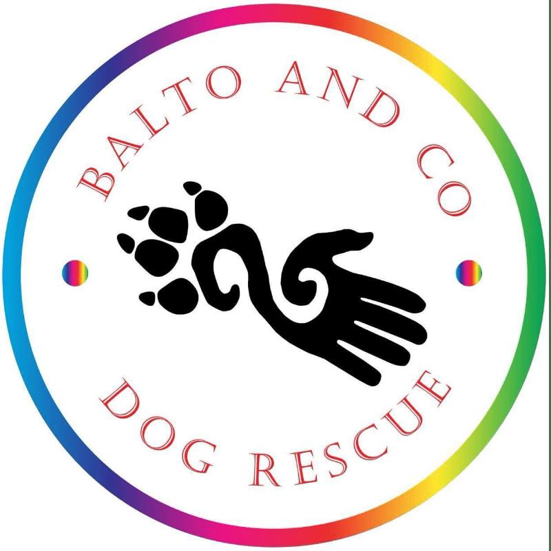 Balto & Co Dog Rescue