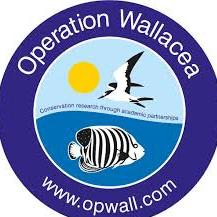 Operation Wallacea Honduras 2020 - Charlie Griffiths
