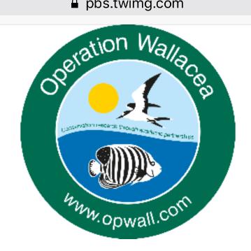 Operation Wallacea Madagascar 2019 - Ella Miles