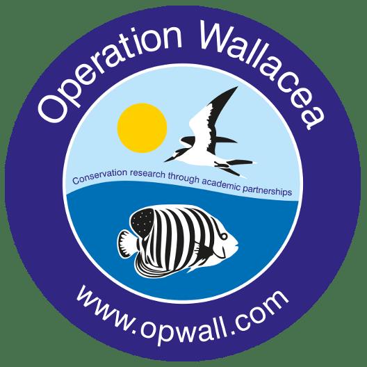 Operation Wallacea Indonesia 2021 - Chloe Tucker