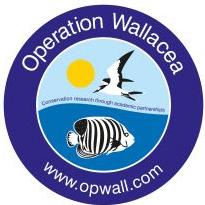 Operation Wallacea Honduras 2017 - Jessica Walsh
