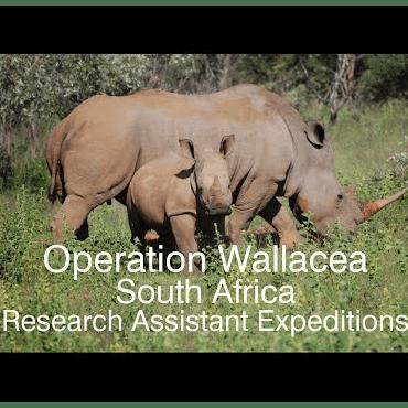 Operation Wallacea South Africa 2020 - Zoya Danayal