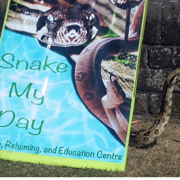 Snake My Day Rescue Rehoming and Education Centre