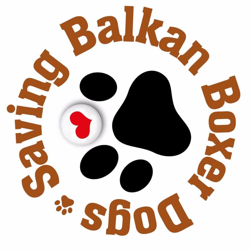 Saving Balkan Boxer Dogs