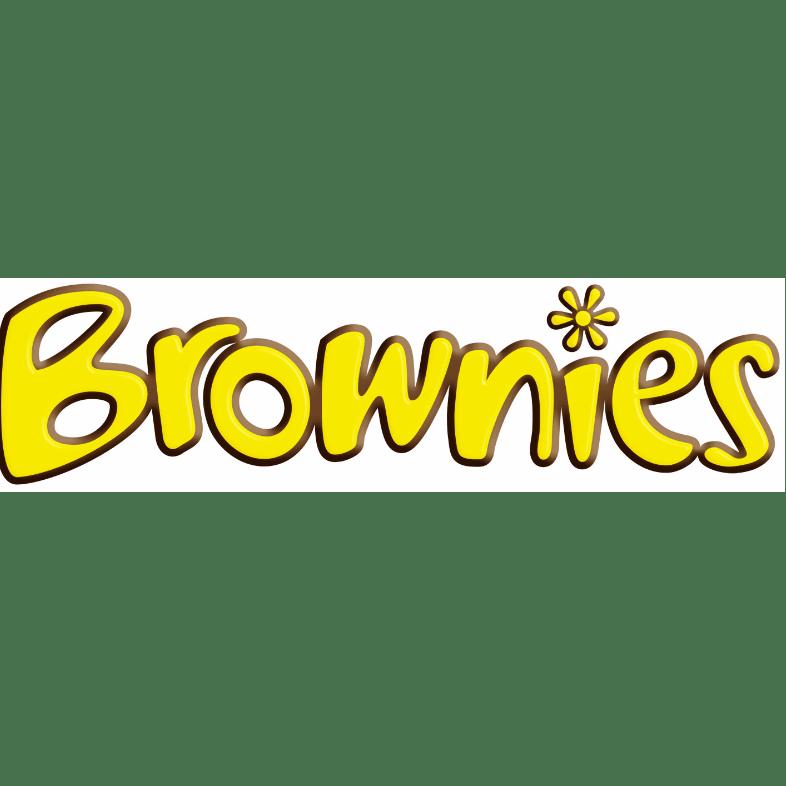 20th Fleetwood Brownies (St Davids)