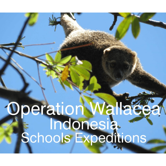 Operation Wallacea Indonesia 2020 - Alex Farley
