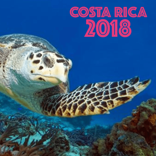 Globalteer Costa Rica 2018 - Phoebe Ruddock