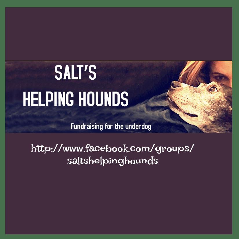 Salt's Helping Hounds