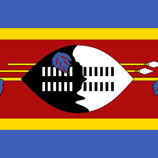 Swaziland 2021 - NFDD