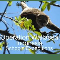 Operation Wallacea Indonesia 2018 - Rachael Clegg