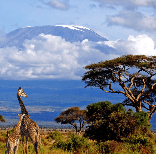 Tanzania 2020 - Hannah Corbett