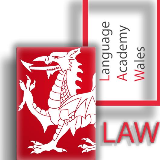 Language Academy Wales - Mike Tan