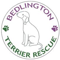 Bedlington Terrier Rescue Foundation
