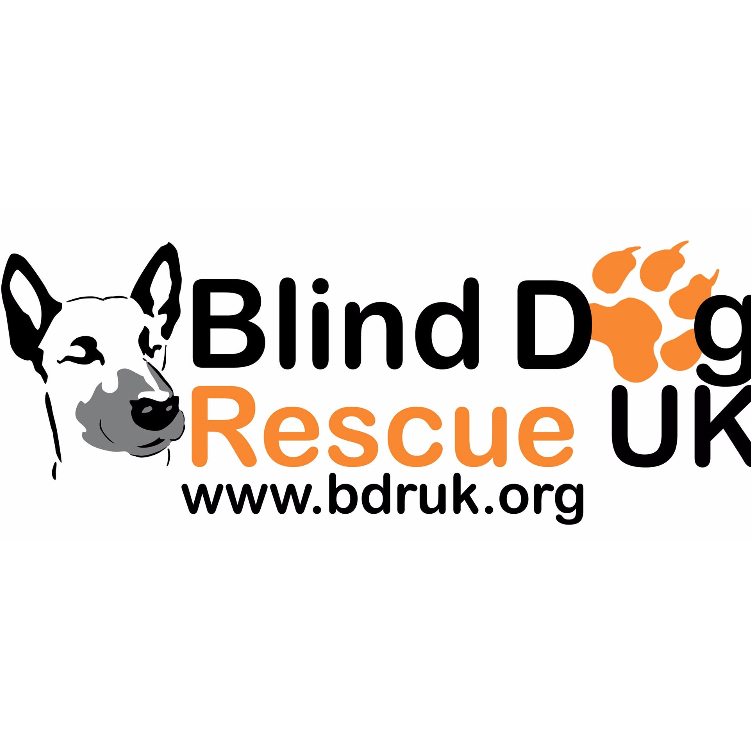 Blind Dog Rescue UK