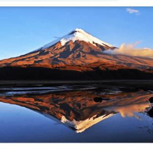 Ecuador 2021 - Lauren Wopling