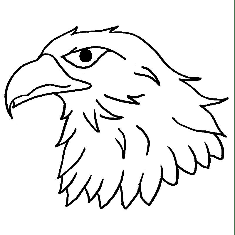 Eagles Gymnastics Club - Norfolk