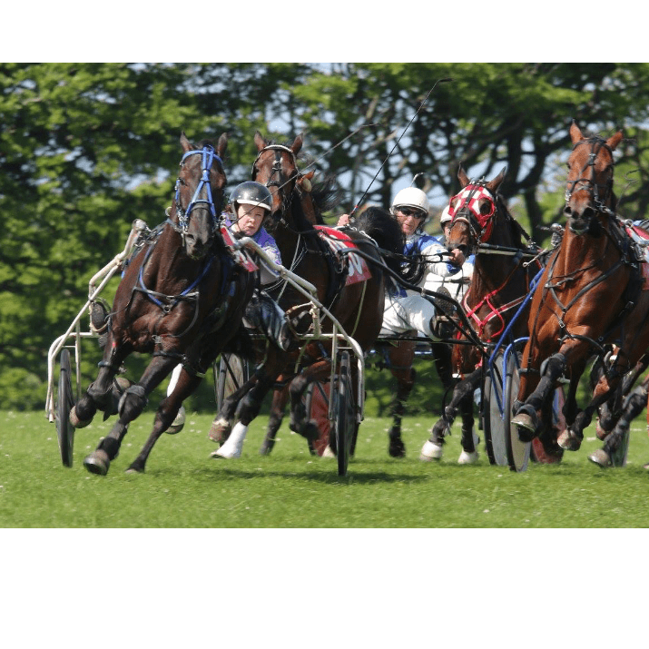 Ludlow Trotting Association