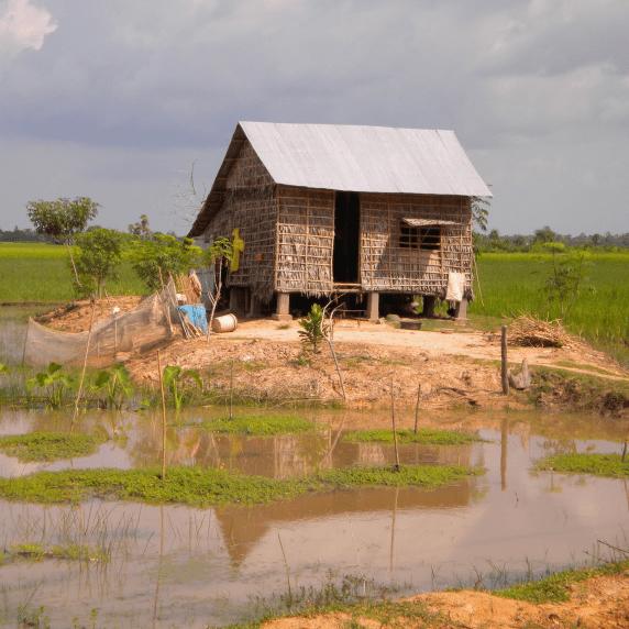 Cambodia 2020 - Bronwyn Case