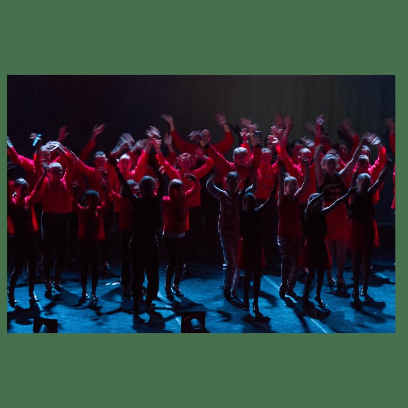 Redz Performing Academy