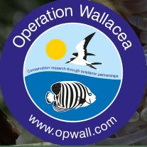 Operation Wallacea Fiji 2019 - Olivia baron