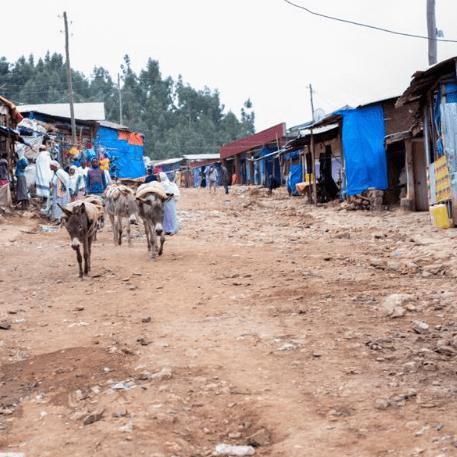 Intoto Mountain Community Ethiopia 2020 - Julie Love