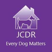 Jodie's Cyprus Dogs Rehoming
