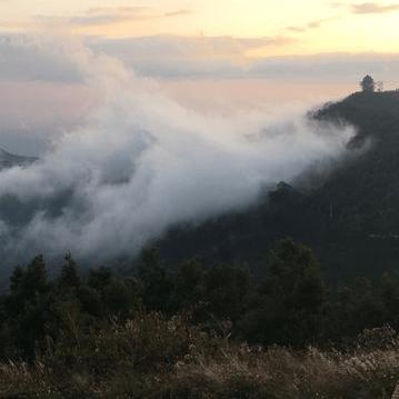 Tanzania 2019 - Chloe Bartlett