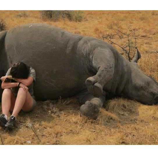 South Africa 2015 - Lucy Taylor