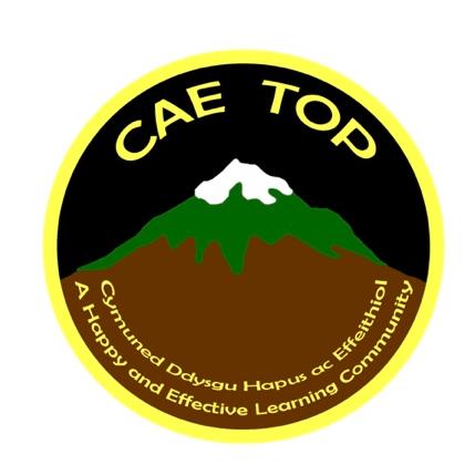 Friends of Cae Top Junior School