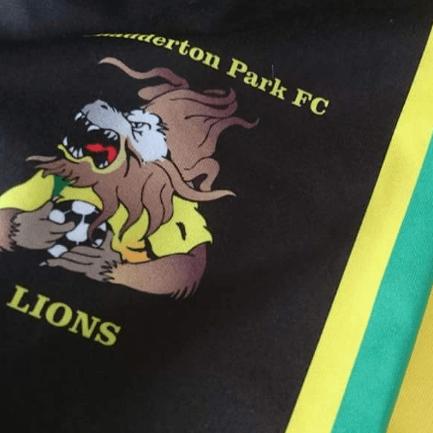 Chaddy Park Lions FC U'8s 2017