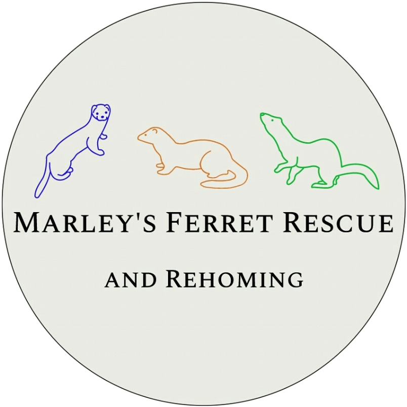 Marley's Ferret Rescue and Rehoming