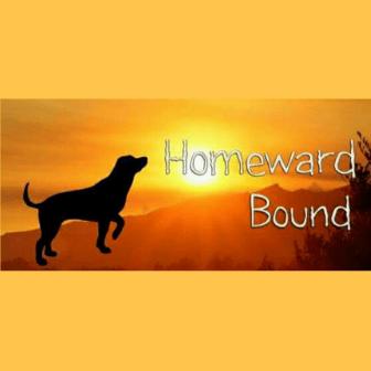 Kathy Rowe raising for Homeward Bound