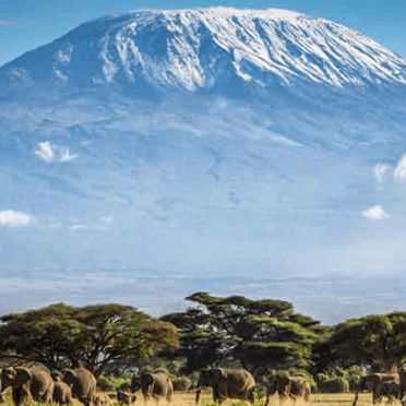 World Challenge Tanzania 2019 - Freya Cordell