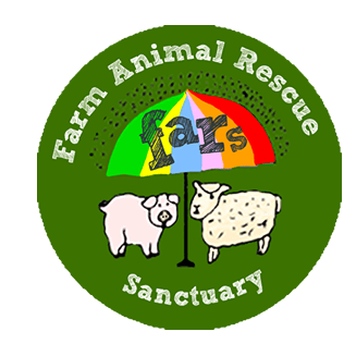 Farm Animal Rescue Sanctuary, Wolverton, Warwickshire
