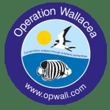 Operation Wallacea Honduras 2021 - Joe Evans