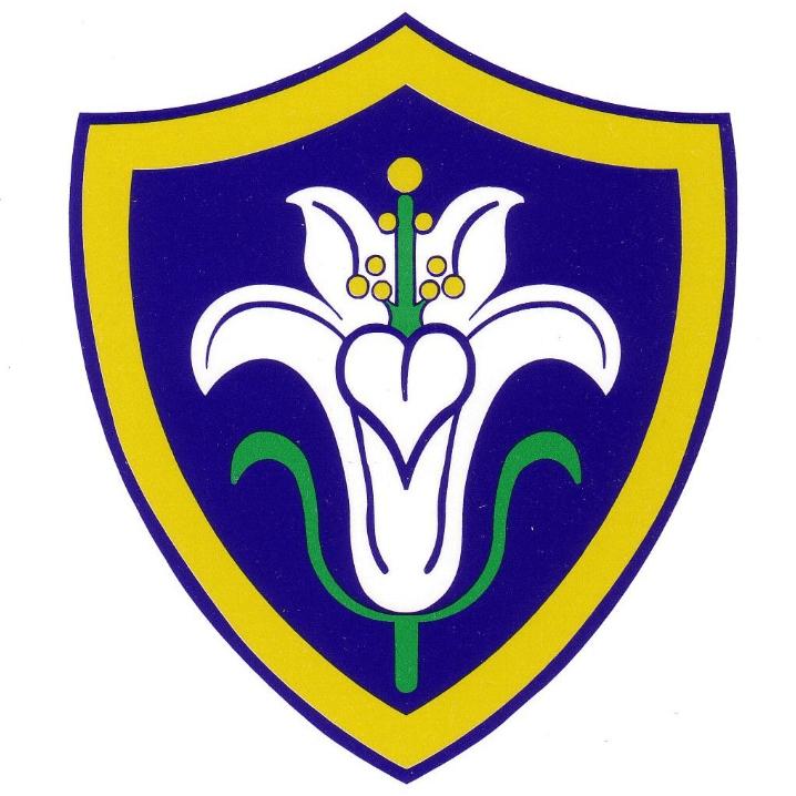 St Mary's Schools PTA Baldock