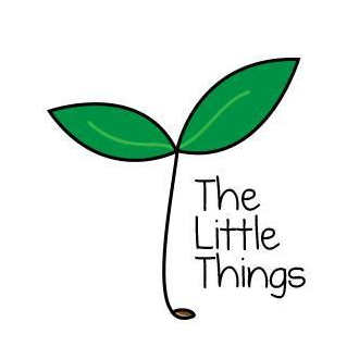 The Little Things Charity