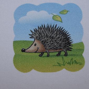 Nettle's Hedgehog Rescue