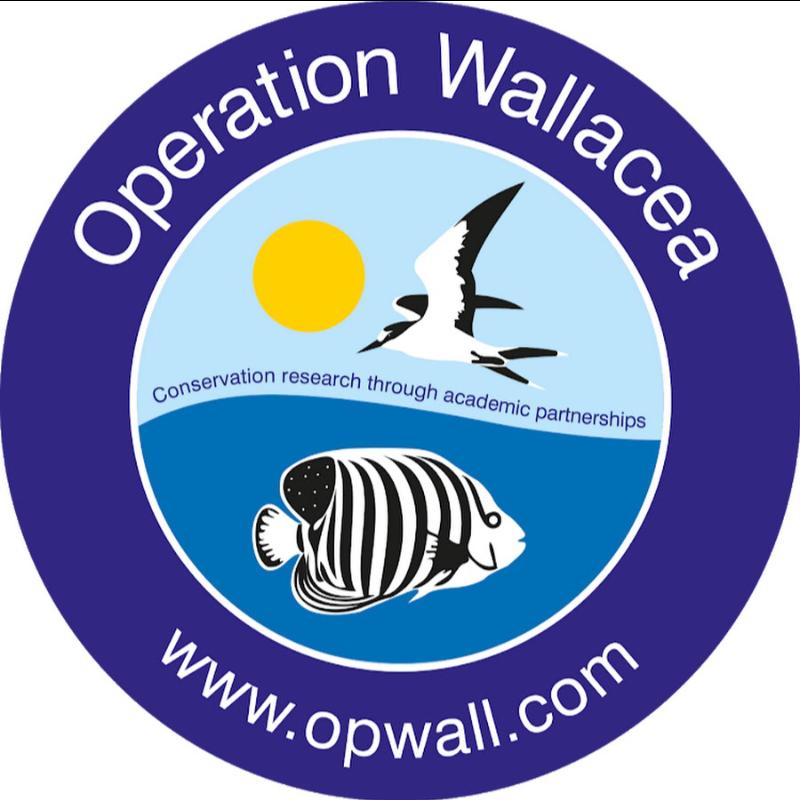 Operation Wallacea Honduras 2021 - Rebecca Payne