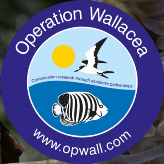 Operation Wallacea Honduras 2019 - Mairéad Corr